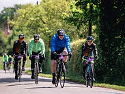 Four cyclists in race on road