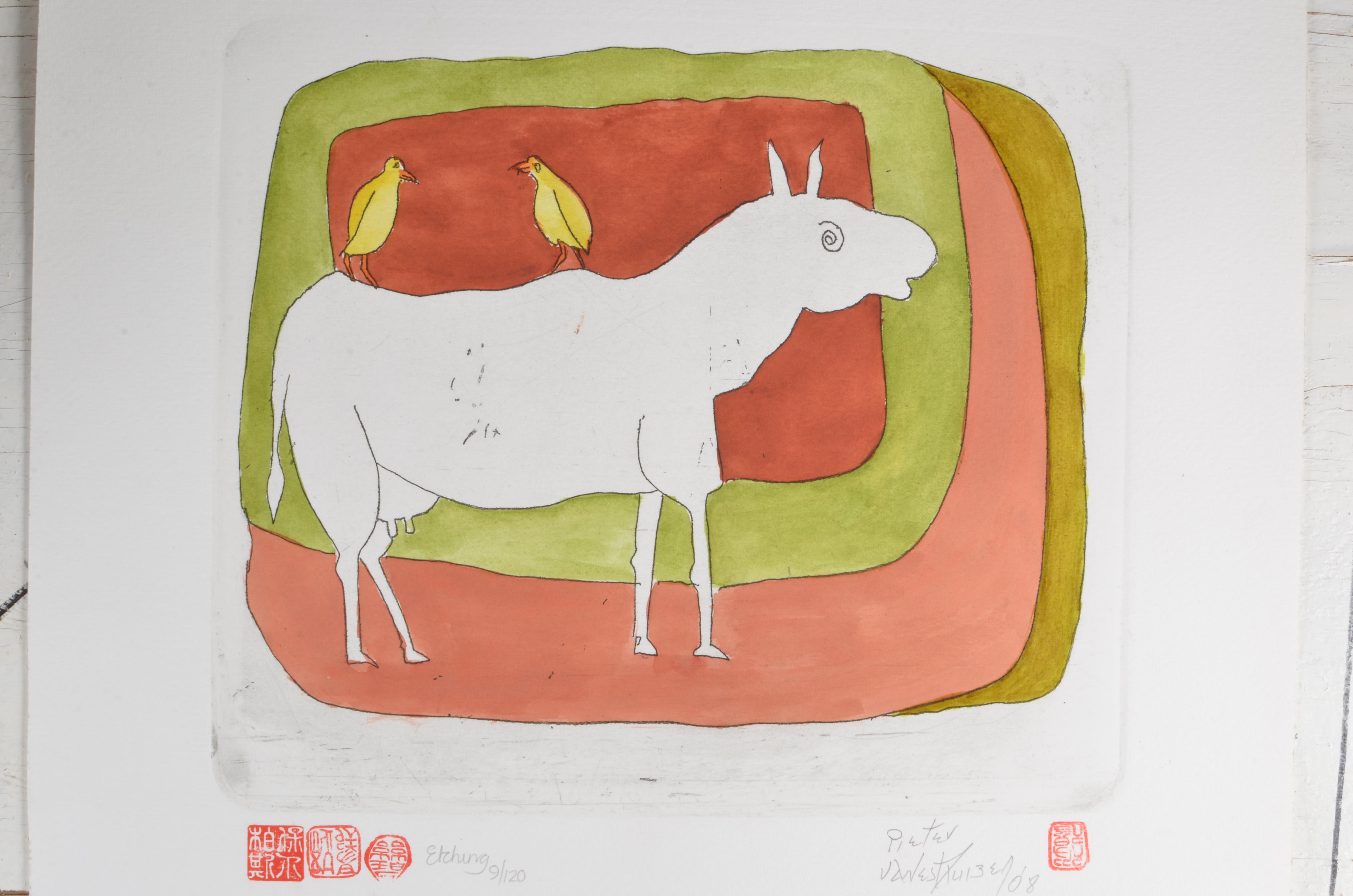 #335 Wit Koei met Voels