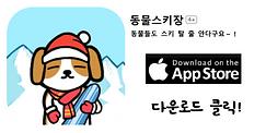 동물스키_app.png