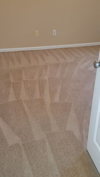 Just Right Carpet Cleaning In Summervile Sc