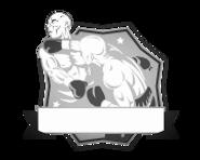 Advanced Mixed Martial Arts classes