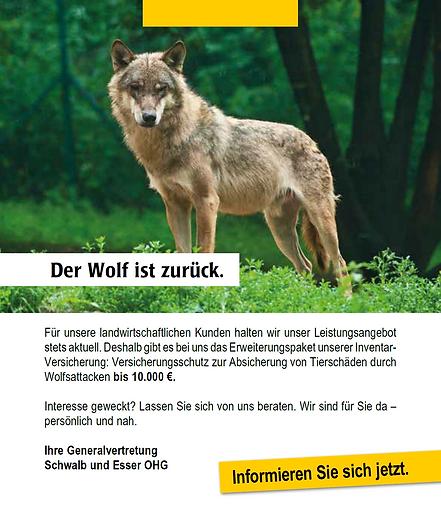Wolf Flyer kurz.png