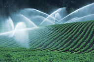 Irrigating Fields