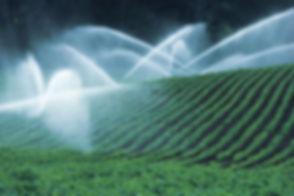 Irrigating Fields