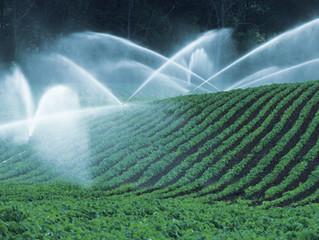 Food companies unprepared for global water crisis