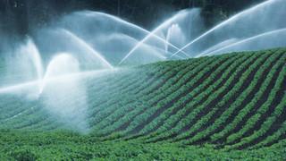 SH17 Irrigating Fields