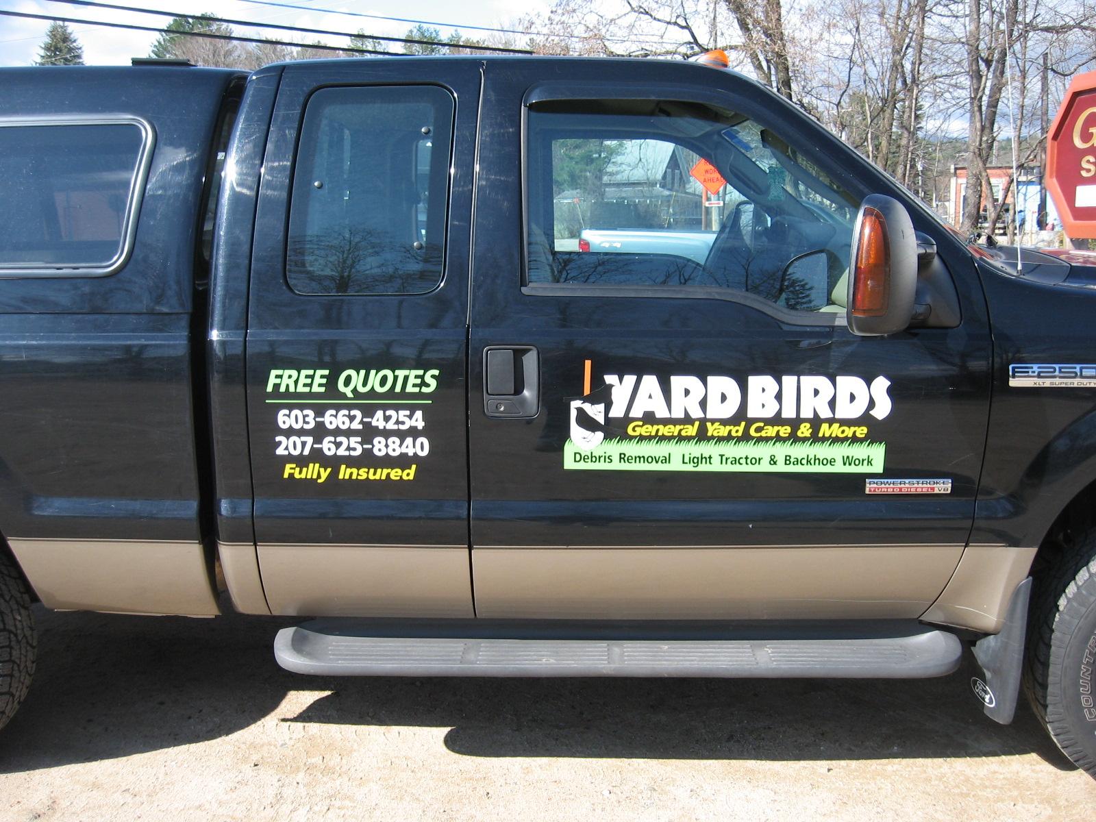 Yard+Birds.JPG