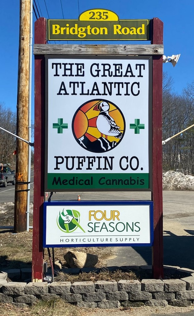 The Great Puffin