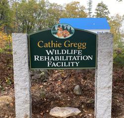 Cathie Gregg Social