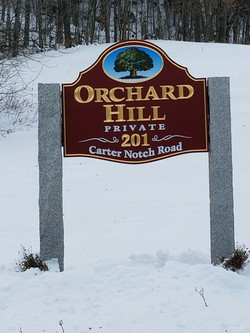 Orchard Hill Photo