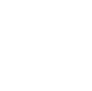 mtn_roots_logo_white_transparent.png