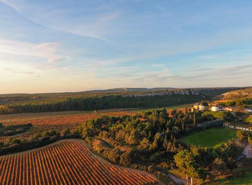 Nouvelle gamme BIO: Château la Vernède