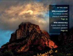 Eko-merkezcilik temelinde düşünebilmek: The Ecological Citizen