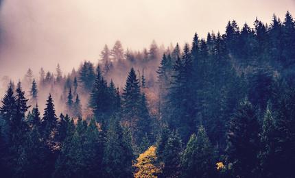 İklim Değişikliğine Etik-Dinsel Bir Bakış