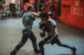 winchester boxing sparring