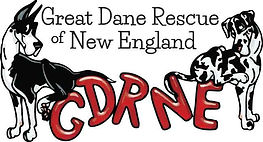 Great Dane Rescue of New England-Adopt a Great Dane