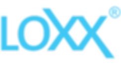 LOXX strap locks