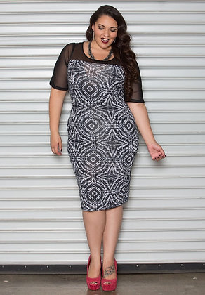 Swak Mesh Bodycon