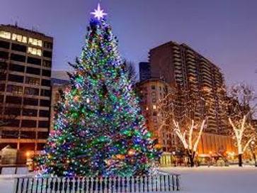 Boston Christmas Festival.jpg