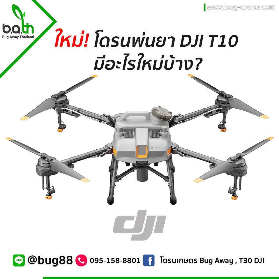 T10 - 01.jpg