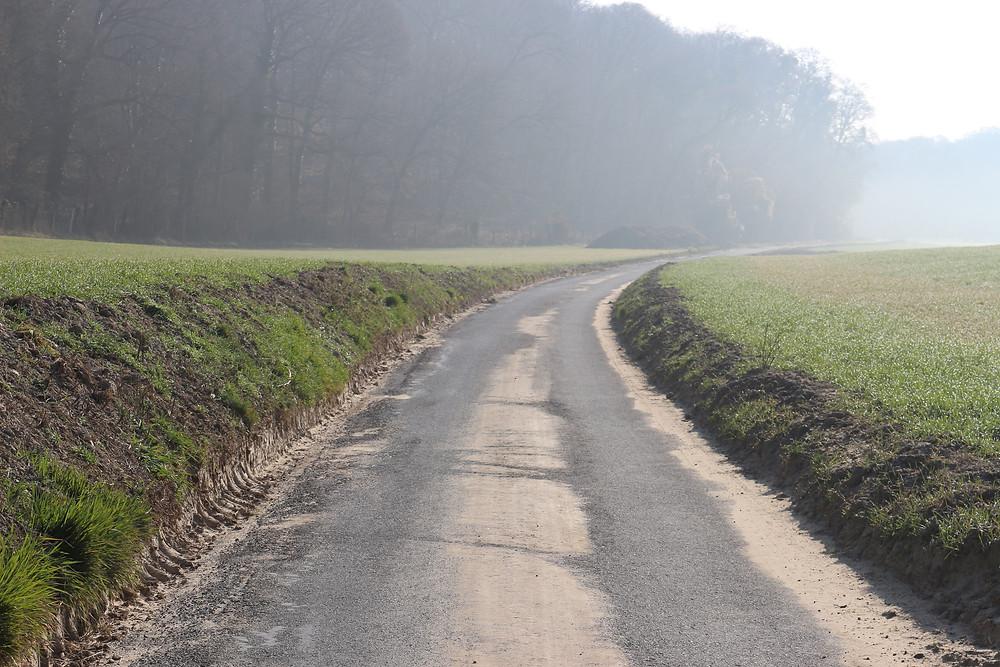 Nous nous plaignions du fait que les agriculteurs favorisaient les coulées de boue sur cette route avec leurs pratiques de labourage et de suppression des talus et des haies. A chaque pécipitation importante l'eau et la boue ruissellent sur la route en rétrécissant la chaussée et en entartrant la chaussée jusqu'au bord du captage. Les autorités ont demandé à une entreprise de gratter la route afin de prévenir d'un risque de pollution du captage en contrebas. Il faut maintenant que nos chers agriculteurs concernés par ces champs riverains remettent en place des talus et des haies pour retenir la terre à l'intérieur des champs, comme la charte de bon voisinage des agriculteurs de l'oise le préconise.ruisselle