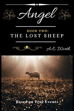 Book 2_ The Lost Sheep Cover 2.jpg