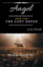 Book 2_ The Lost Sheep Cover.png