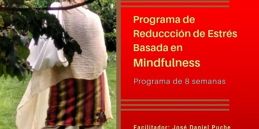Reducción del stress Mindfulness