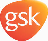 GSK Plectrum only (002).jpg