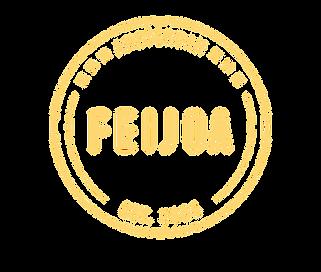 Bar Feijoa amsterdam, cocktail bar, fun, bartenders, drinking, night life
