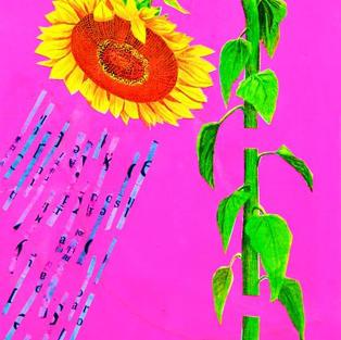 030 Sun Shower