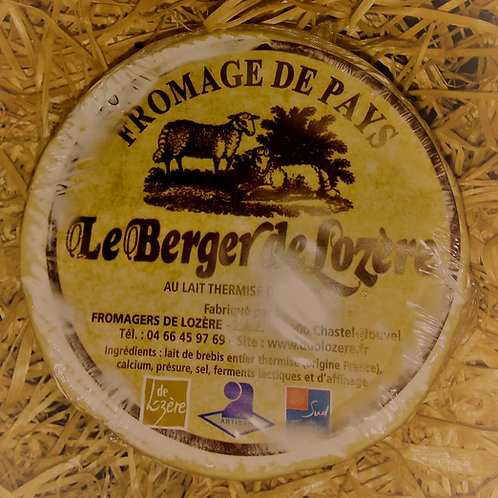 Le Berger de Lozère