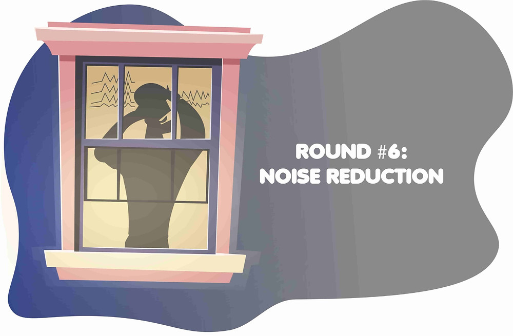 installation-of-noise-reduction-windows