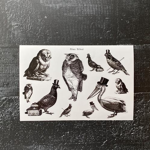 Stickersheet | komische Vögel | Vogelhilfe