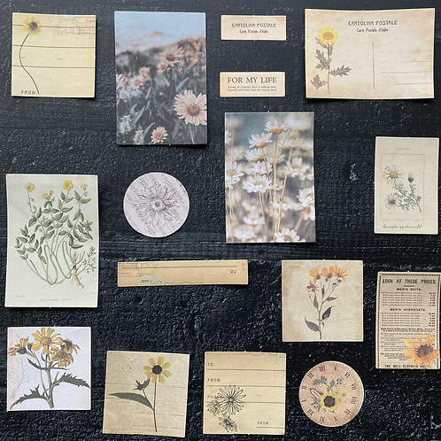 Vintage Journalingsticker | Sonnenblume  | Fremdgebibert | 20 Stück