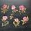 Thumbnail: Fremdgebibert | große Aufkleber | rosa Rosen | 6 Stück