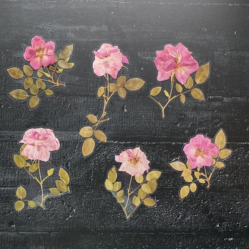 Fremdgebibert | große Aufkleber | rosa Rosen | 6 Stück