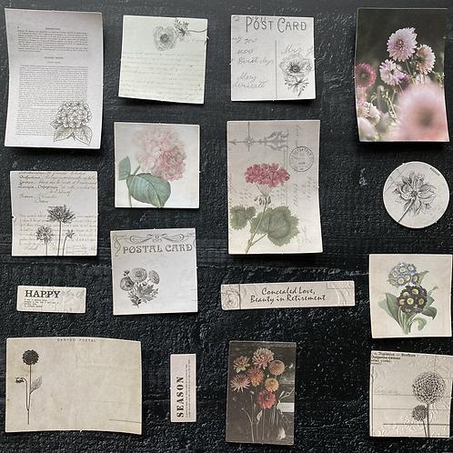 Vintage Journalingsticker | Dahlien | Fremdgebibert | 20 Stück