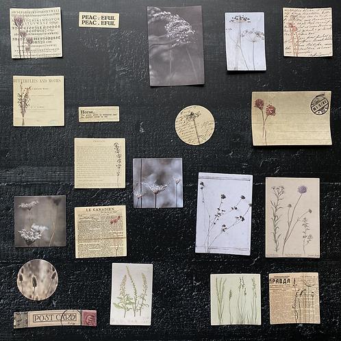 Vintage Journalingsticker   Winter   Fremdgebibert   20 Stück
