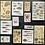 Thumbnail: Fremdgebibert   Washisticker   Meeresbewohner   20 Stück