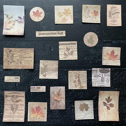 Vintage Journalingsticker   Herbst   Fremdgebibert   20 Stück