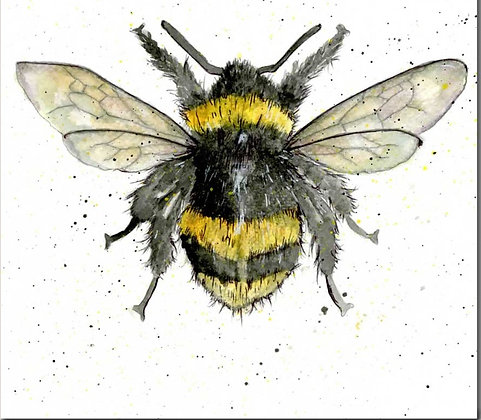 Bumble Bee Greeting Card by Sarah Boddy