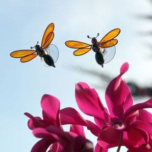 Beautiful Bees -   Bugz Range