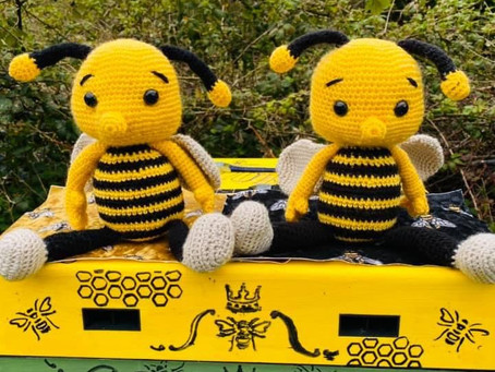 Happy World Bee Day 2021 - Fun Competition
