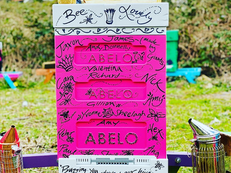 Adopt A Beehive - New Pink Abelo Hive !