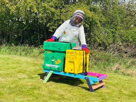 Bear Cool Second Apiary set up in Belper