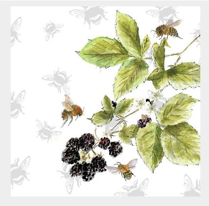 Bramble - Bee-tannicals Greeting Card by Sarah Boddy