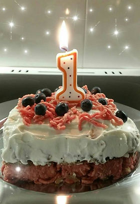 Manun 1v-kakku.jpg