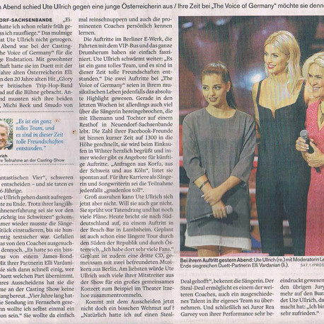 N. The Voice Wilstersche Zeitung 2015.jp