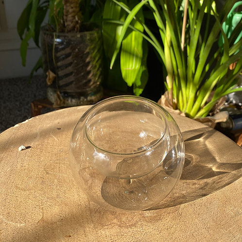 Air Plant Holder - Glass